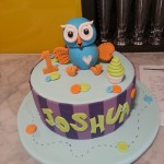 single-tier-round-birthday-cake-boy-hoot